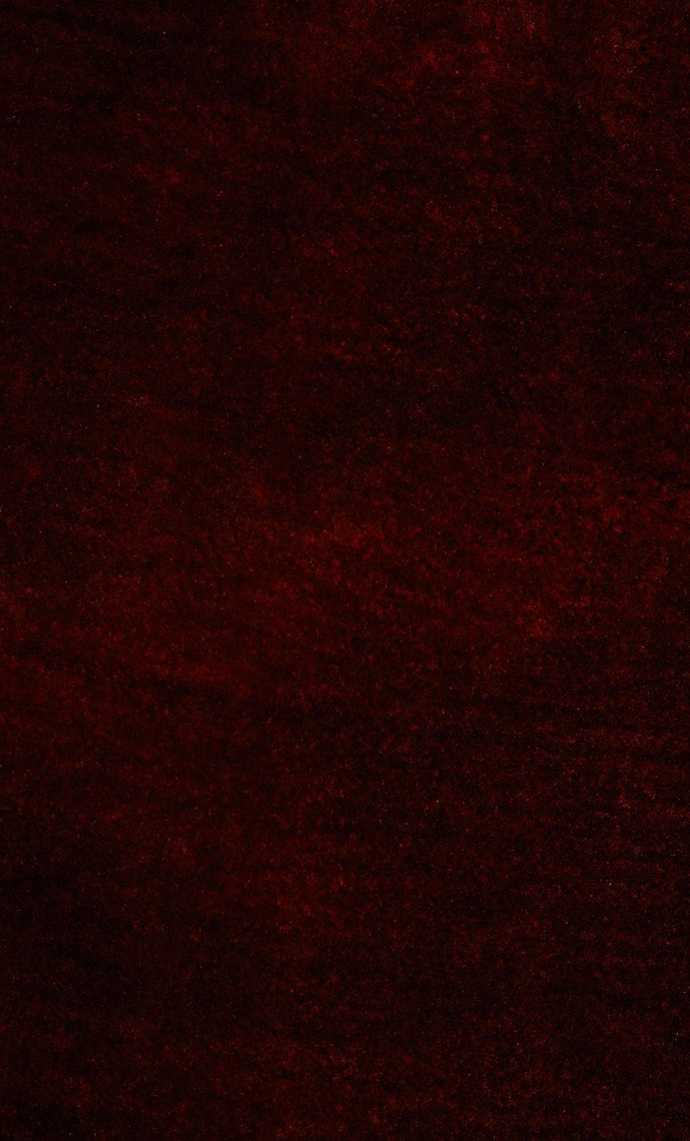 Zoot-Brique-Red
