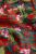 Salina-Red