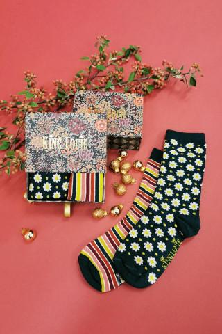 Gift Box Socks Koji